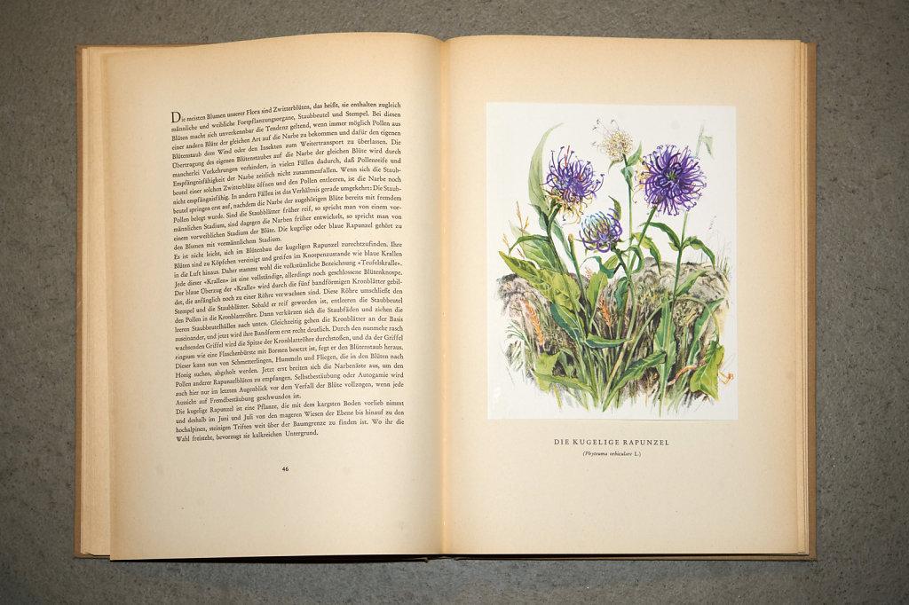 Book-02862.jpg